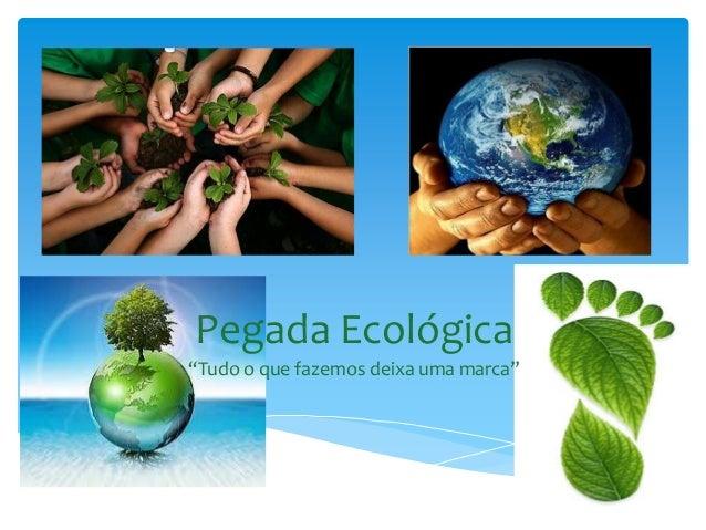 """Pegada Ecológica""""Tudo o que fazemos deixa uma marca"""""""