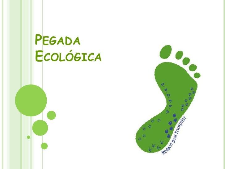 Pegada Ecológica<br />