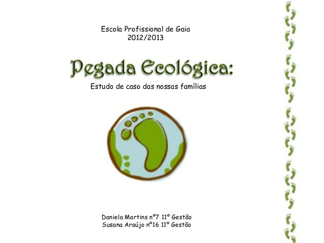 Escola Profissional de Gaia           2012/2013Estudo de caso das nossas famílias   Daniela Martins nº7 11º Gestão   Susan...