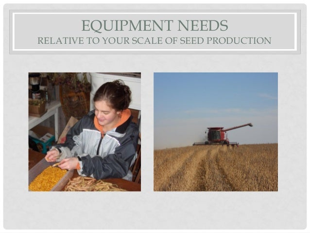 EQUIPMENT NEEDS RELATIVE TO YOUR SCALE OF SEED PRODUCTION