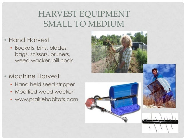 Seed Cleaning equipment needs relative to scale of production Slide 2