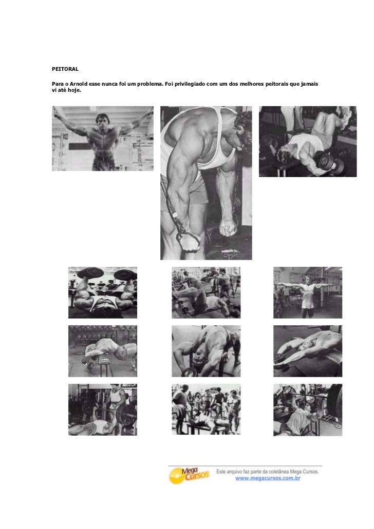 PEITORALPara o Arnold esse nunca foi um problema. Foi privilegiado com um dos melhores peitorais que jamaisvi até hoje.