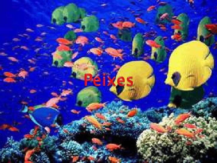 Peixes<br />Peixes<br />