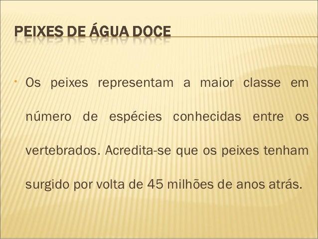 •   Os peixes representam a maior classe em    número de espécies conhecidas entre os    vertebrados. Acredita-se que os p...