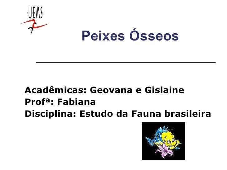Peixes Ósseos Acadêmicas: Geovana e Gislaine Profª: Fabiana Disciplina: Estudo da Fauna brasileira