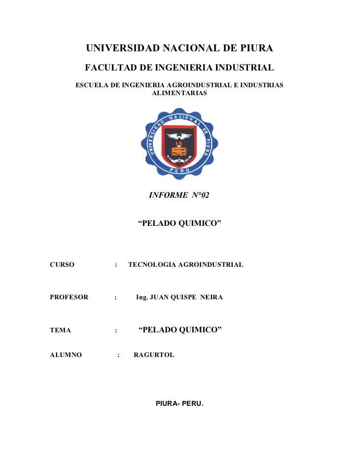 UNIVERSIDAD NACIONAL DE PIURA          FACULTAD DE INGENIERIA INDUSTRIAL        ESCUELA DE INGENIERIA AGROINDUSTRIAL E IND...