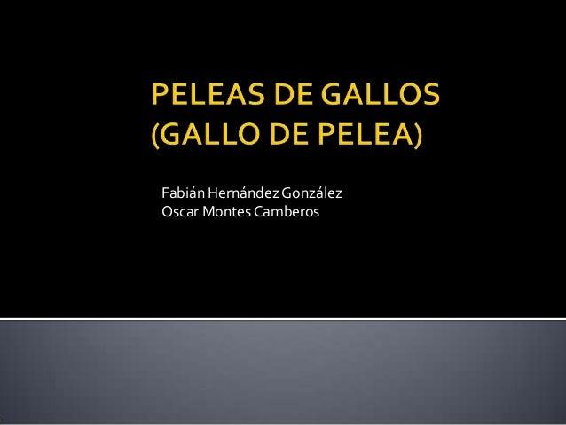 Fabián Hernández GonzálezOscar Montes Camberos