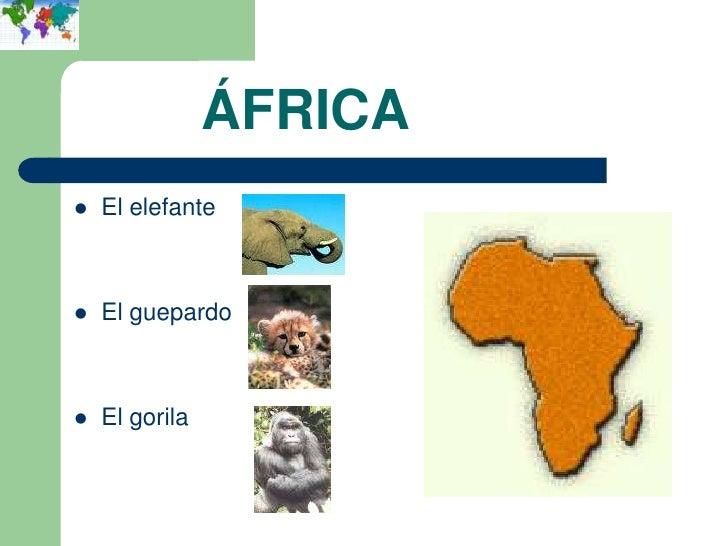 ÁFRICA   El elefante   El guepardo   El gorila