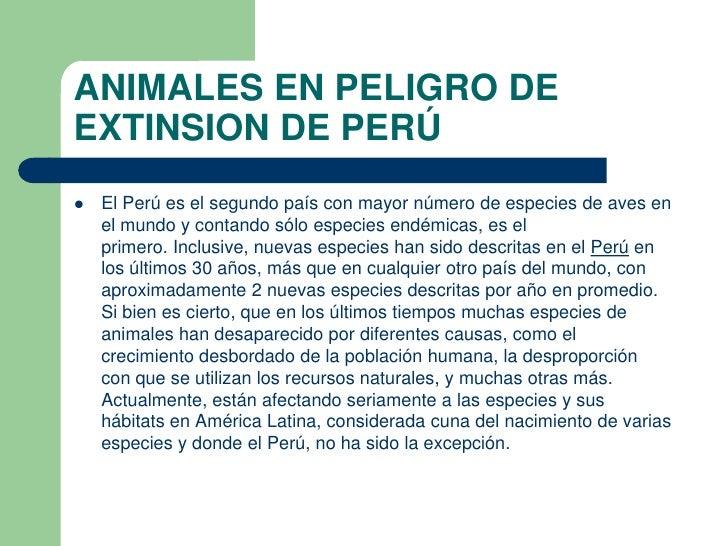 ANIMALES EN PELIGRO DEEXTINSION DE PERÚ   El Perú es el segundo país con mayor número de especies de aves en    el mundo ...