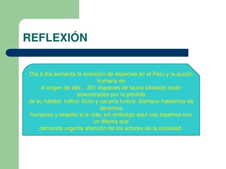 REFLEXIÓNDía a día aumenta la extinción de especies en el Perú y la acción                                humana es    el ...