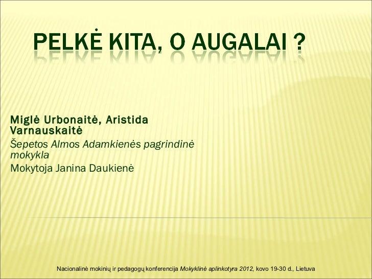 Miglė Urbonaitė, AristidaVarnauskaitėŠepetos Almos Adamkienės pagrindinėmokyklaMokytoja Janina Daukienė        Nacionalinė...