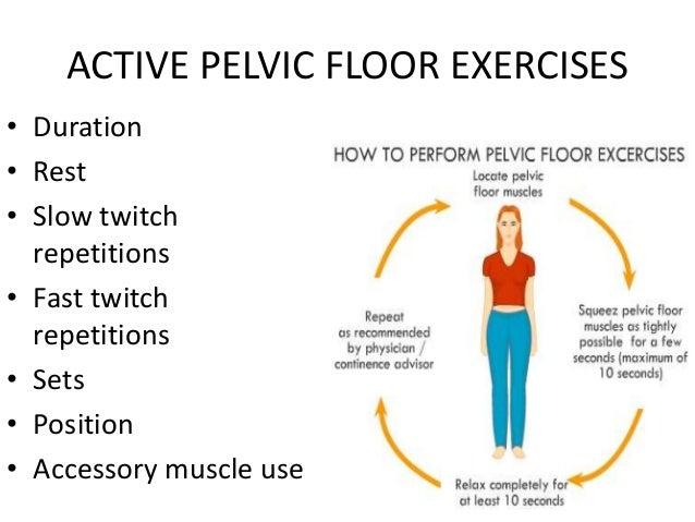 Pelvic Floor Rehabilitation