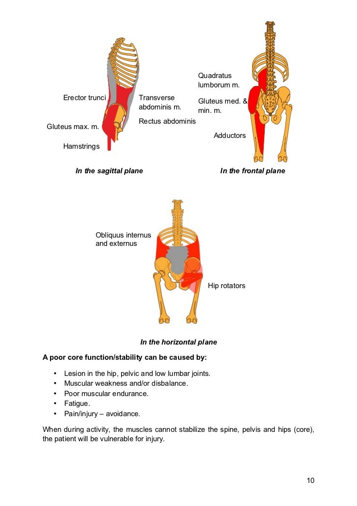 Pelvic, Hip and Core Stability