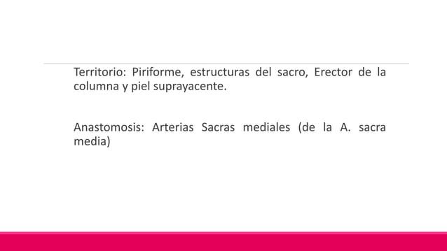 Territorio: Piriforme, los 3 músculos glúteos y el Tensor de la Fascia Lata Anastomosis: Sacra lateral, Glútea Inferior, P...