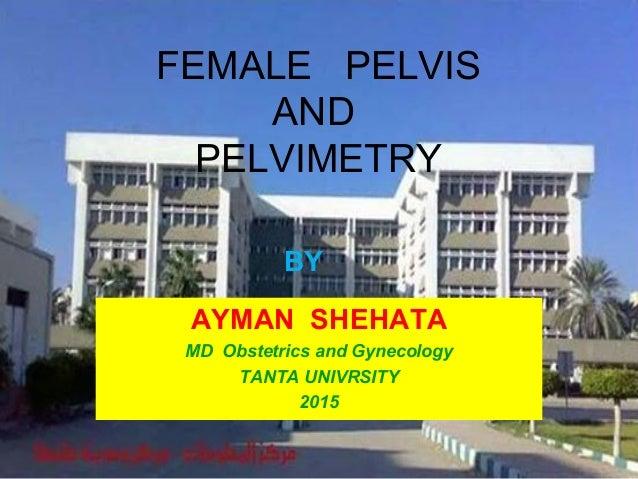 FEMALE PELVIS AND PELVIMETRY AYMAN SHEHATA MD Obstetrics and Gynecology TANTA UNIVRSITY 2015 BY