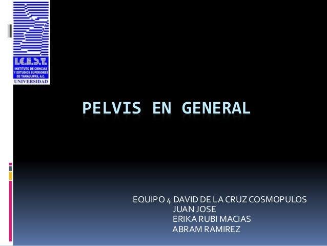 PELVIS EN GENERAL EQUIPO 4 DAVID DE LA CRUZ COSMOPULOS JUAN JOSE ERIKA RUBI MACIAS ABRAM RAMIREZ