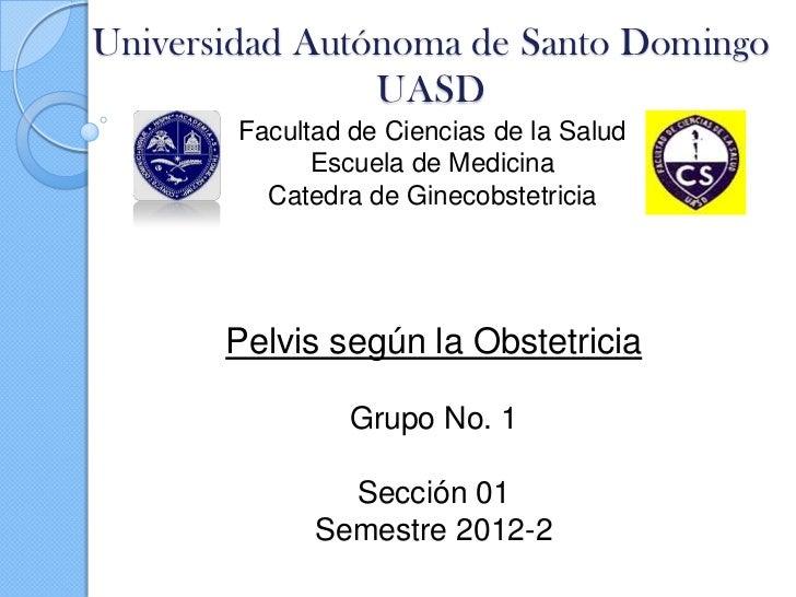 Universidad Autónoma de Santo Domingo                UASD        Facultad de Ciencias de la Salud              Escuela de ...