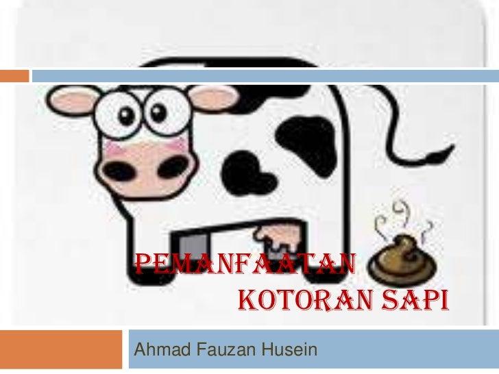 PEMANFAATAN     KOTORAN SAPIAhmad Fauzan Husein
