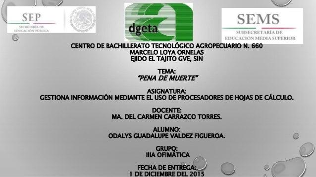 "CENTRO DE BACHILLERATO TECNOLÓGICO AGROPECUARIO N. 660 MARCELO LOYA ORNELAS EJIDO EL TAJITO GVE, SIN TEMA: ""PENA DE MUERTE..."