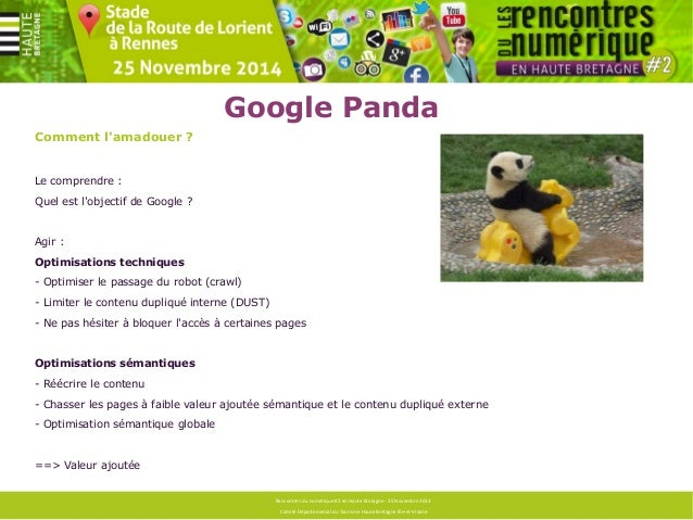 Google Panda  Espérer s'en sortir ?  Identifier la cause, savoir ce qui a été fait sur le site (audit sémantique et techni...