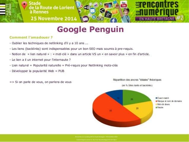 Google Penguin  Espérer s'en sortir ?  Faire un un état de lieux, voir si le profil de liens paraît naturel (audit de popu...