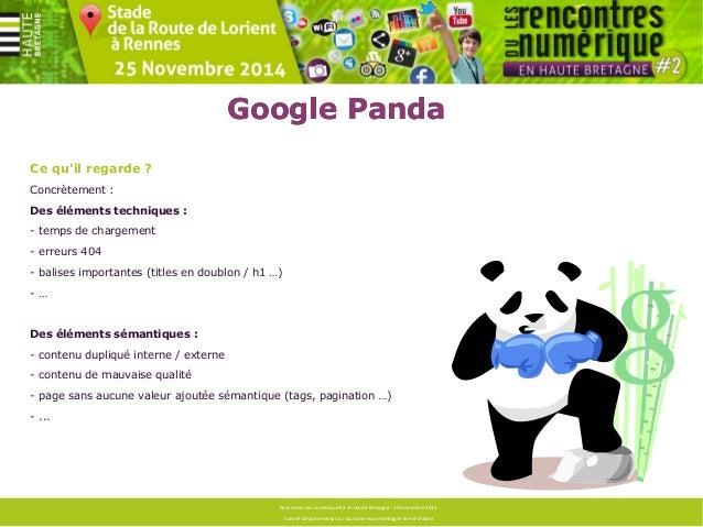 Google Panda  Comment le détecter ?  - Analyser le trafic (webanalytics) :  Toutes les pages n'étant pas forcément pénalis...