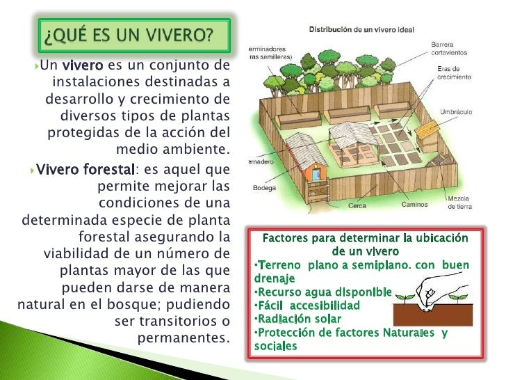Un   vivero es un conjunto de      instalaciones destinadas a     desarrollo y crecimiento de        diversos tipos de pl...