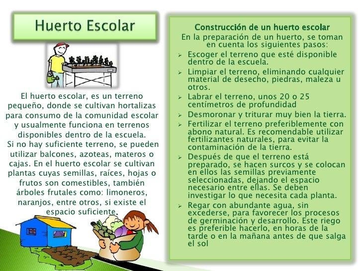 Pr cticas agroecol gicas for Factores para seleccionar el terreno para el vivero