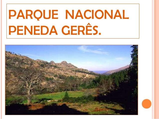 PARQUE NACIONAL PENEDA GERÊS.