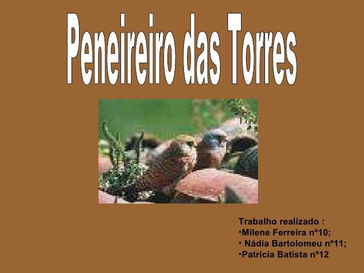 Peneireiro das Torres <ul><li>Trabalho realizado : </li></ul><ul><li>Milene Ferreira nº10; </li></ul><ul><li>Nádia Bartolo...