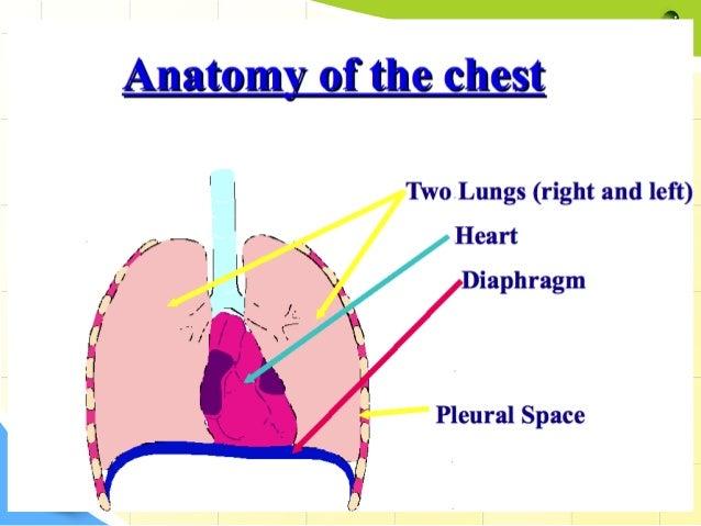 Penetrating chest trauma