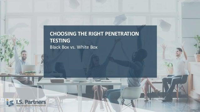White box penetration testing