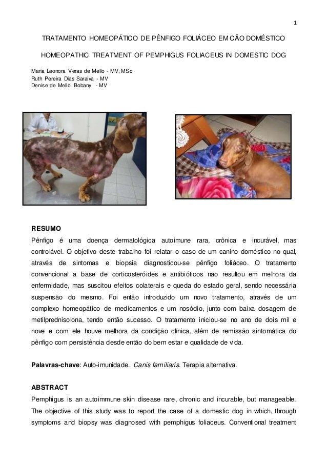 1  TRATAMENTO HOMEOPÁTICO DE PÊNFIGO FOLIÁCEO EM CÃO DOMÉSTICO  HOMEOPATHIC TREATMENT OF PEMPHIGUS FOLIACEUS IN DOMESTIC D...