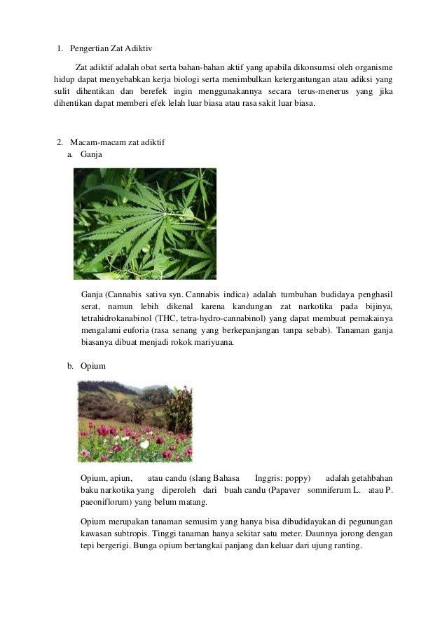 1. Pengertian Zat AdiktivZat adiktif adalah obat serta bahan-bahan aktif yang apabila dikonsumsi oleh organismehidup dapat...