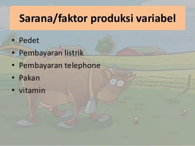 business plan penggemukan sapi
