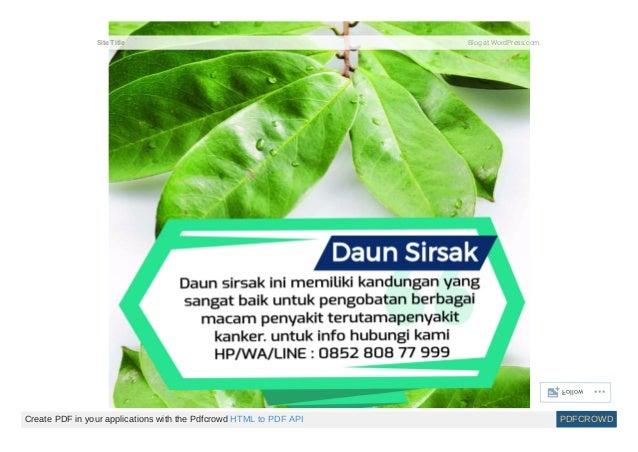 Pengobatan herbal kanker payudara stadium 4