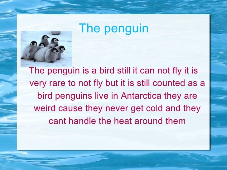 The penguin The penguin is a bird still it can not fly it is very rare to not fly but it is still counted as a bird pengui...