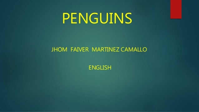 PENGUINS JHOM FAIVER MARTINEZ CAMALLO ENGLISH