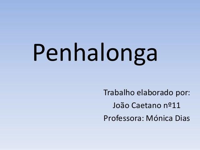 Penhalonga     Trabalho elaborado por:        João Caetano nº11     Professora: Mónica Dias