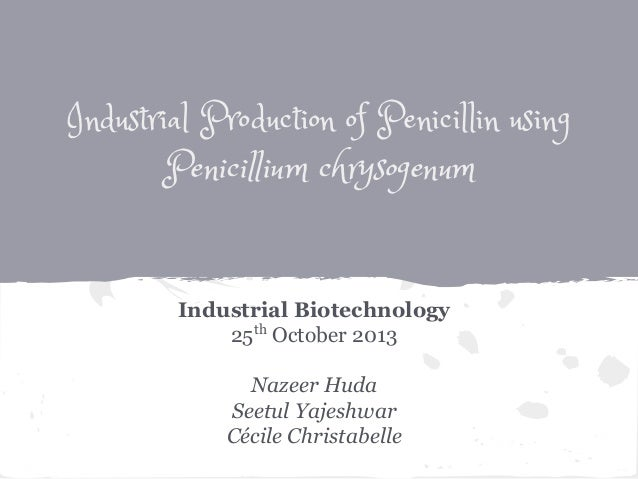 Industrial Production of Penicillin using Penicillium chrysogenum Industrial Biotechnology 25th October 2013 Nazeer Huda S...