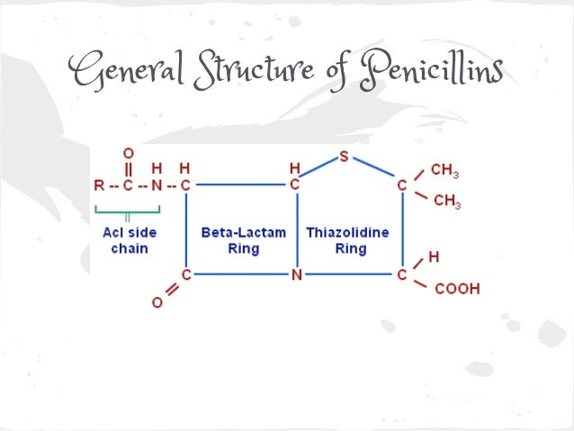 7  general structure of penicillins