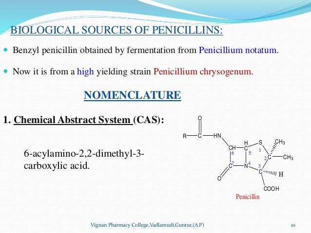 BIOLOGICAL SOURCES OF PENICILLINS:  Benzyl penicillin obtained by fermentation from Penicillium notatum.  Now it is from...