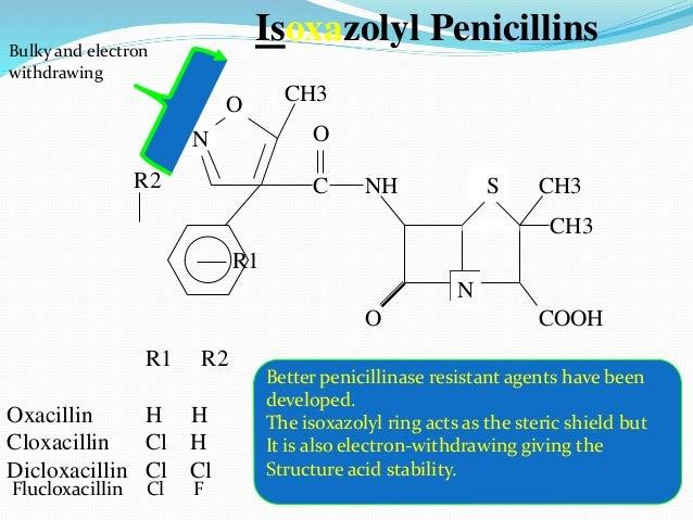 O N SNH COOH CH3 CH3 C O Isoxazolyl Penicillins O N CH3 R1 R2 R1 R2 Oxacillin H H Cloxacillin Cl H Dicloxacillin Cl Cl Bet...