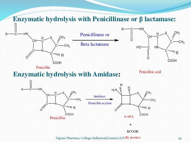 Enzymatic hydrolysis with Penicillinase or β lactamase: Vignan Pharmacy College,Vadlamudi,Guntur.(A.P) 29 CH C N H C C C S...