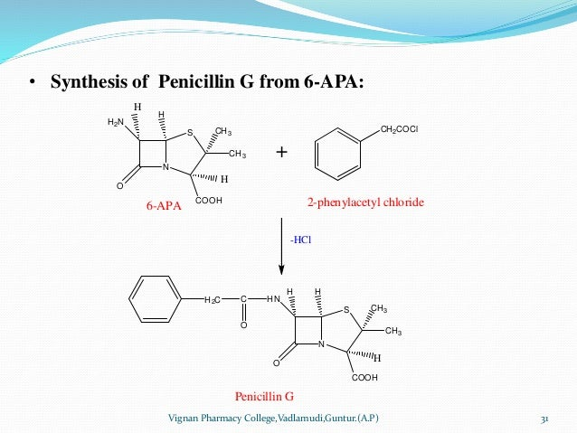 • Synthesis of Penicillin G from 6-APA: Vignan Pharmacy College,Vadlamudi,Guntur.(A.P) 31 N S COOH CH3 H2N CH3 H O H H 6-A...