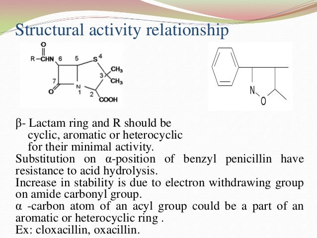 cephalosporin and penicillin relationship advice