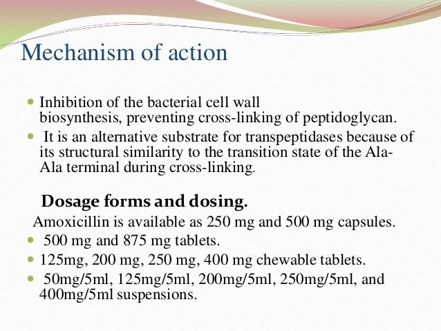 biochemical action of bacteria Antibacterial action generally falls within one of four mechanisms, three of which involve the inhibition or regulation of enzymes involved in cell wall biosynthesis, nucleic acid metabolism and repair, or protein synthesis, respectively.