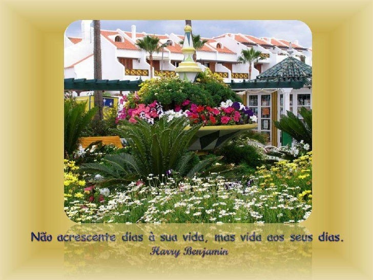 Pensamentos em jardins