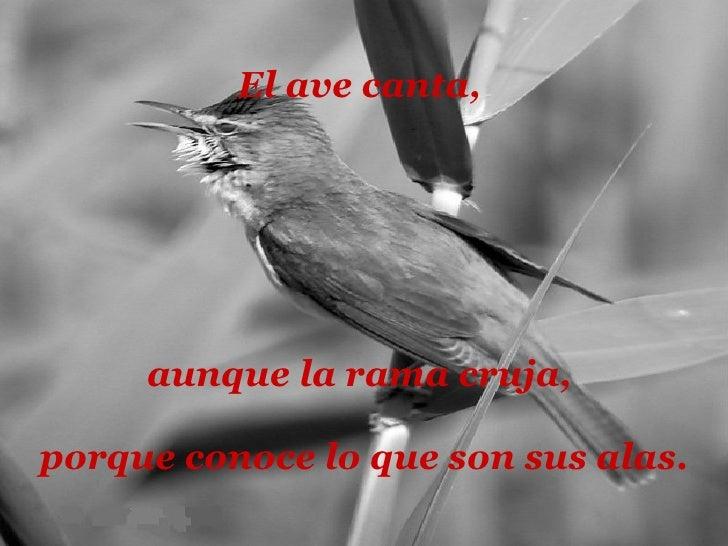 El ave canta,  aunque la rama cruja,  porque conoce lo que son sus alas .