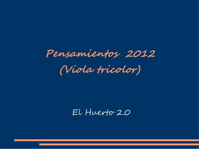 Pensamientos 2012  (Viola tricolor)    El Huerto 2.0